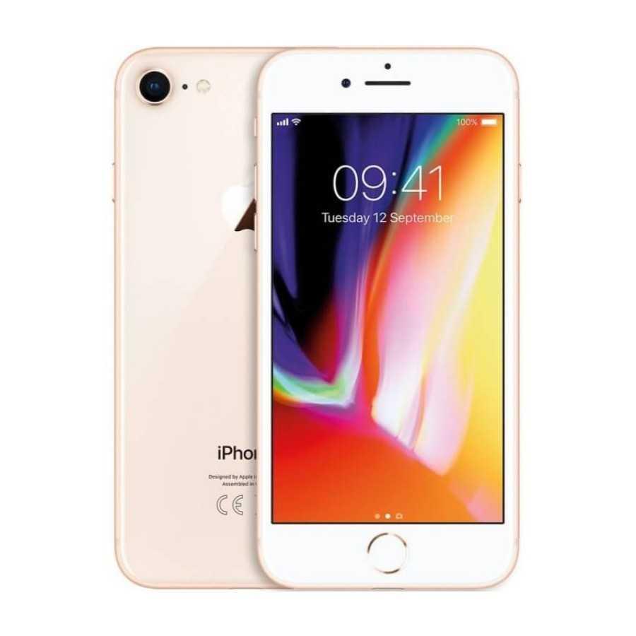 iPhone 8 - 64GB GOLD ricondizionato usato IP8GOLD64A