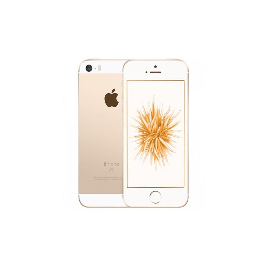 iPhone SE - 64GB GOLD ricondizionato usato IPSEGOLD64B