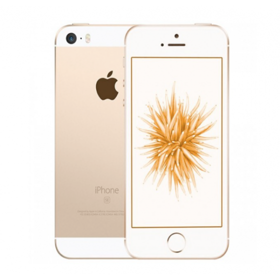 iPhone SE - 32GB GOLD ricondizionato usato IPSEGOLD32B