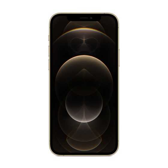 iPhone 12 PRO MAX - 256GB ORO