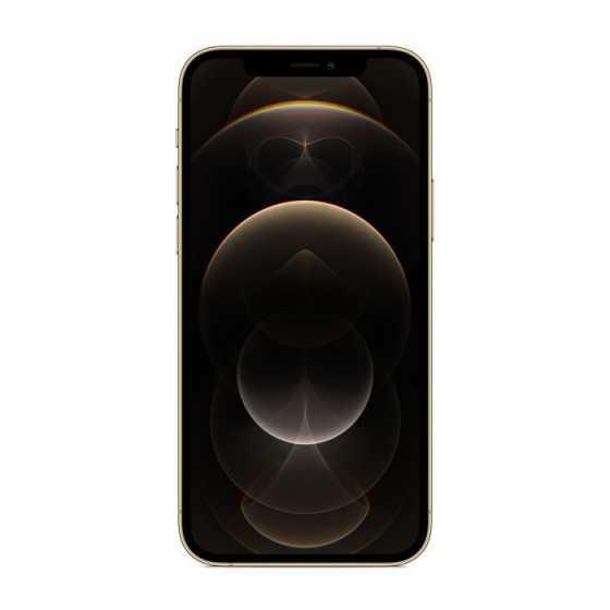 iPhone 12 PRO - 256GB ORO