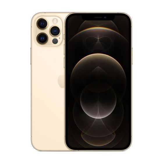 iPhone 12 PRO - 512GB ORO ricondizionato usato IP12PRO512OROC